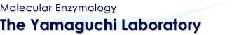 Molecular Enzymology - The Yamaguchi Laboratory